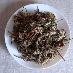 Багульник болотный (цвет) 50 грамм