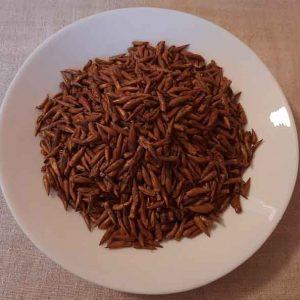 Почки черного тополя 50 грамм