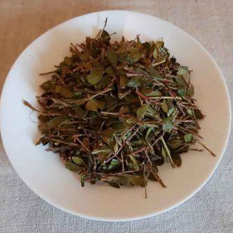 Толокнянка, медвежьи ушки (лист и стебель) 50 грамм