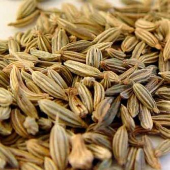 Анис обыкновенный (плоды) 50 грамм