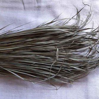 Зубровка трава - от интернет магазина «Лекарственные травы для всех».