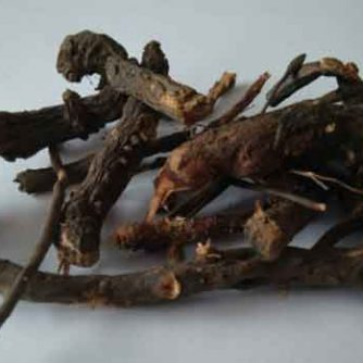 Кровохлебка корень 50 грамм