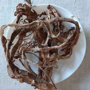 Красный корень, копеечник 50 грамм